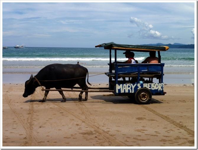 Taxi, Sabang style