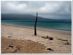 Near Wineglass Bay Tasmania
