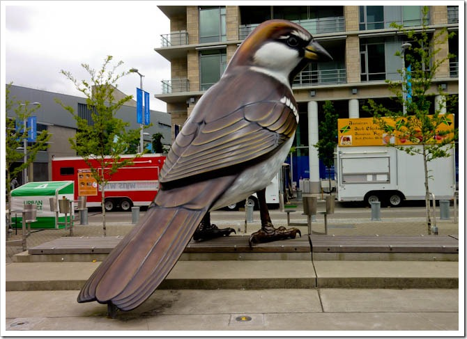 The Birds - Vancouver