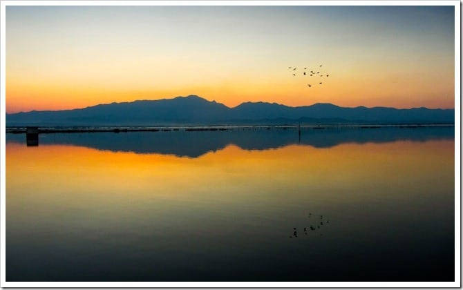 Birds at sunset over Phayao lake