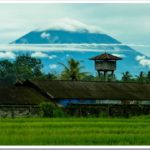 Rain and rice paddies: a cycle tour in Bali