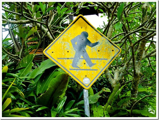 Beware of walking yetis