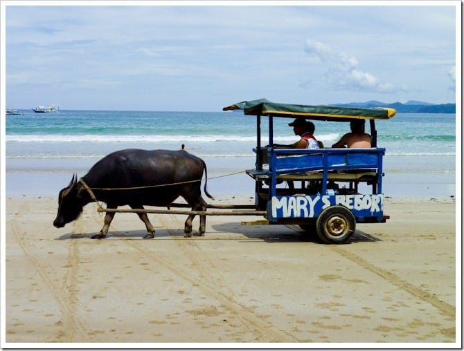 Sabang taxi