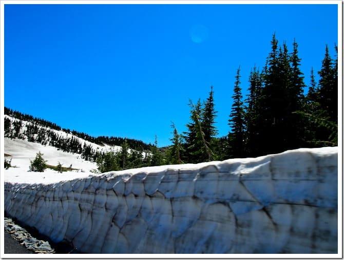 Roadside snow, Glacier National Park