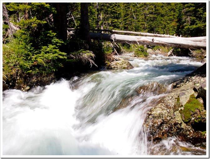 Roaring river, Cascade Canyon