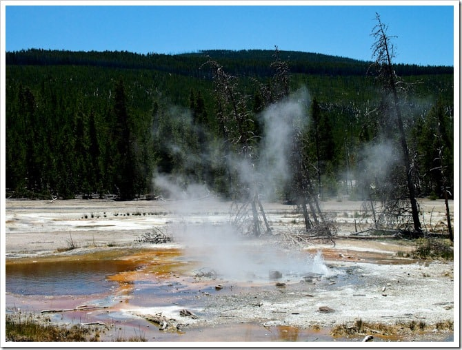 Steaming pool, Yellowstone