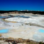 The incredible diversity of Yellowstone