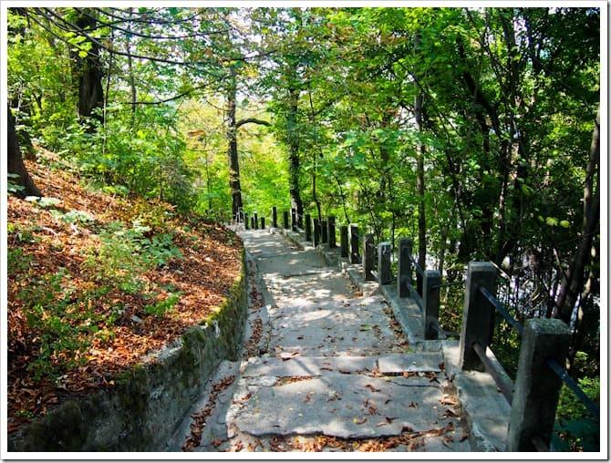 Sighisoara path