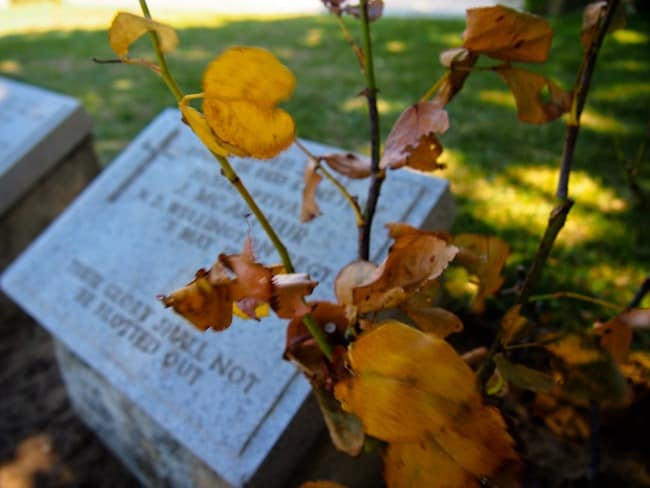 Gallipoli gravestone