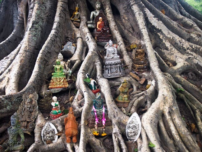 Dedications, Sukhothai