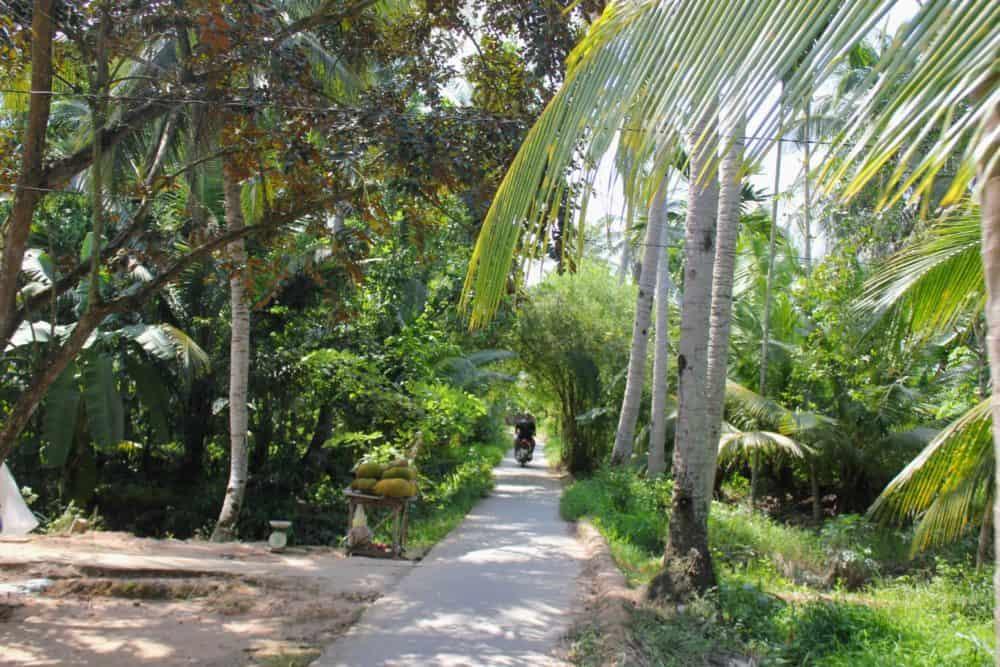 Island road, Mekong Delta