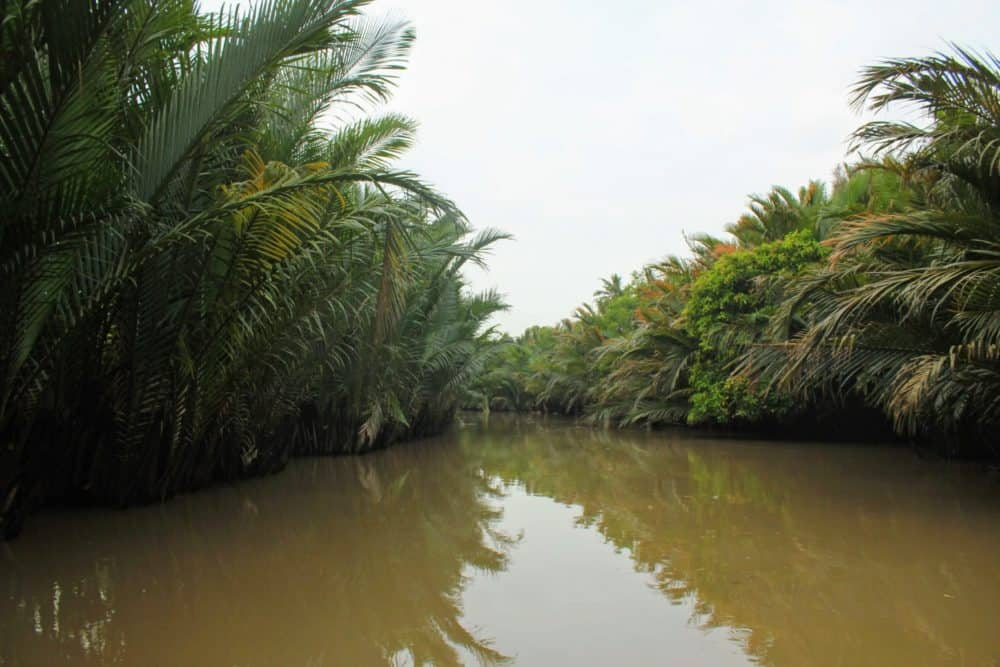 Muddy Mekong