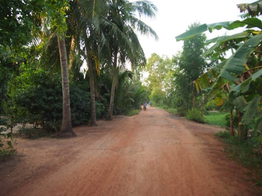Rutted road, Mekong Delta