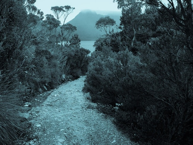 Cradle Mountain trail