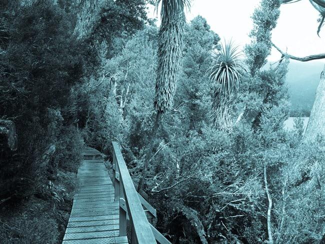 Cradle Mountain wooden bridge