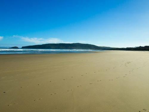 Catlins beach