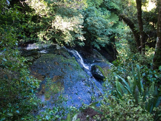 Top of Purakaunui Falls