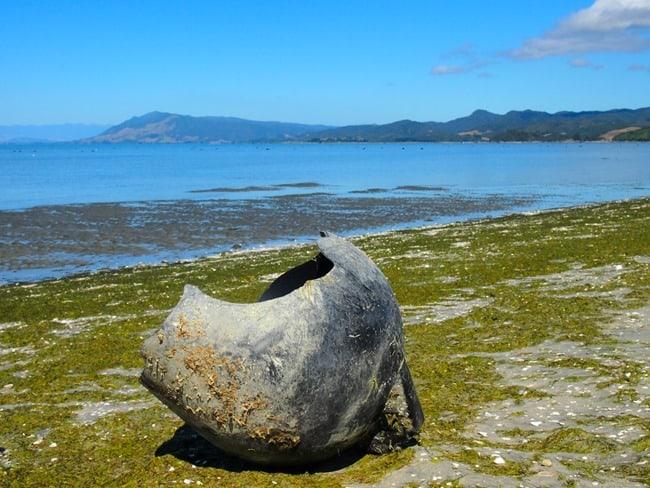 Buoy on the beach, Farewell Spit