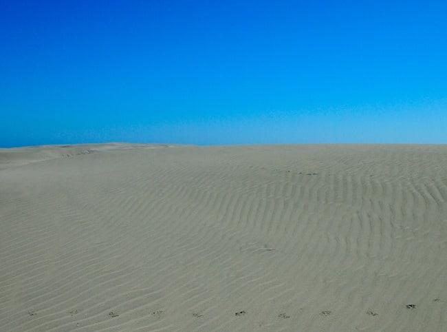 Dunes - Farewell Spit