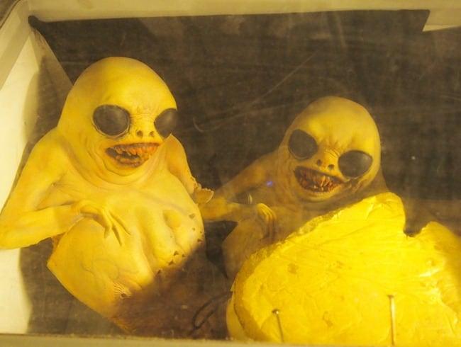 Freezer alien closeup