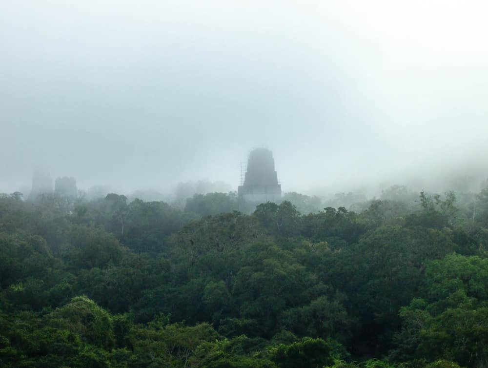 Foggy View from Temple IV