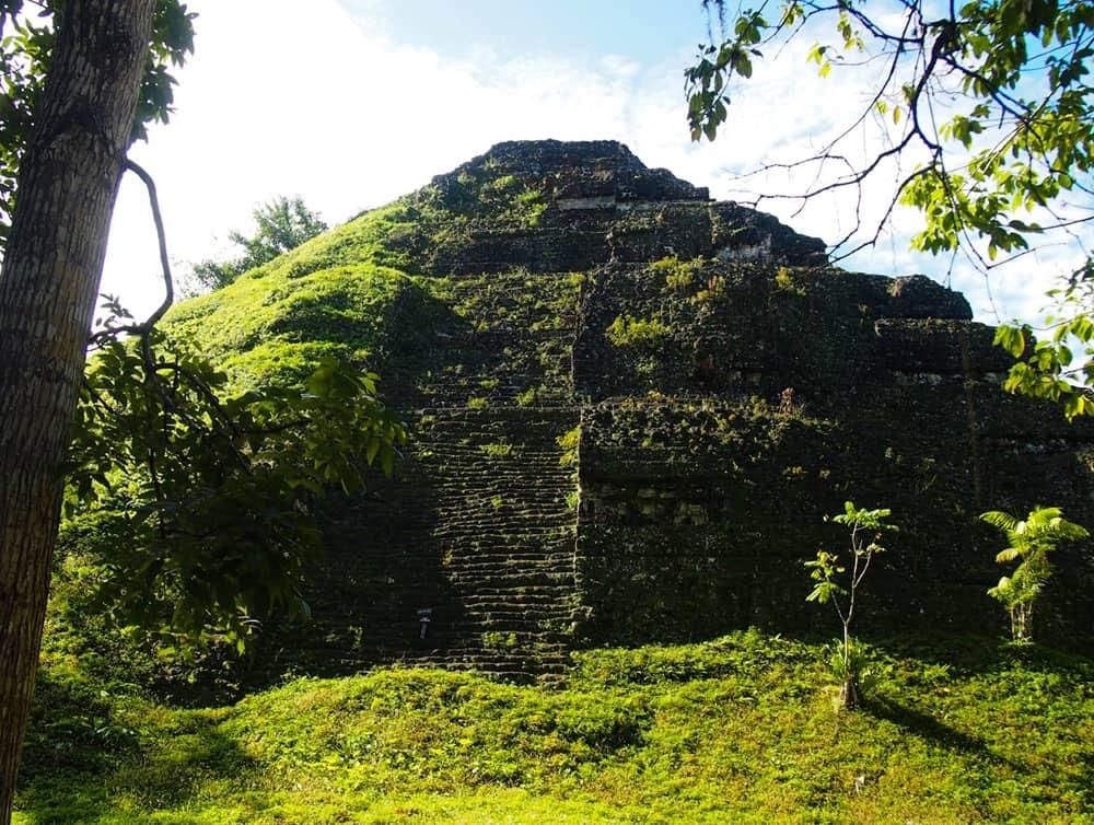 Sunny Tikal 2