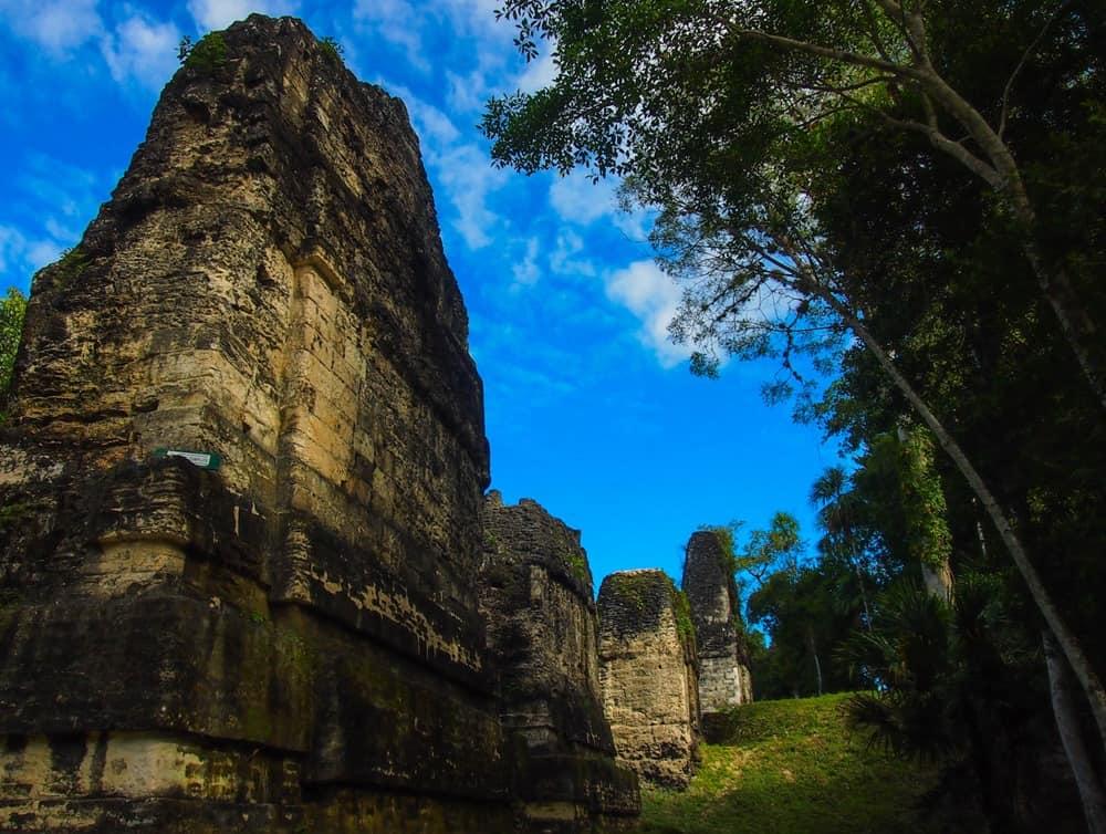 Sunny Tikal