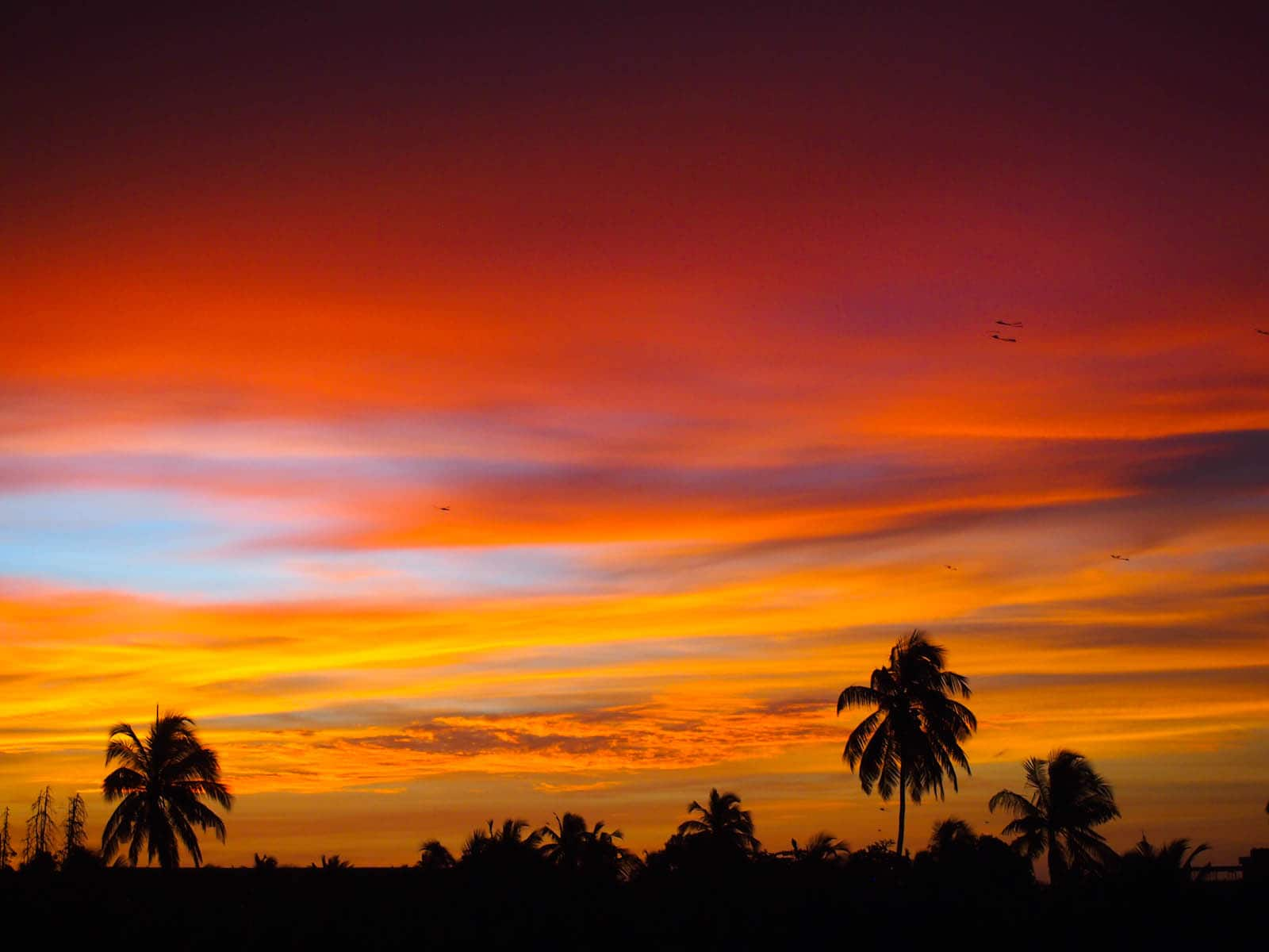 Negombo sunset