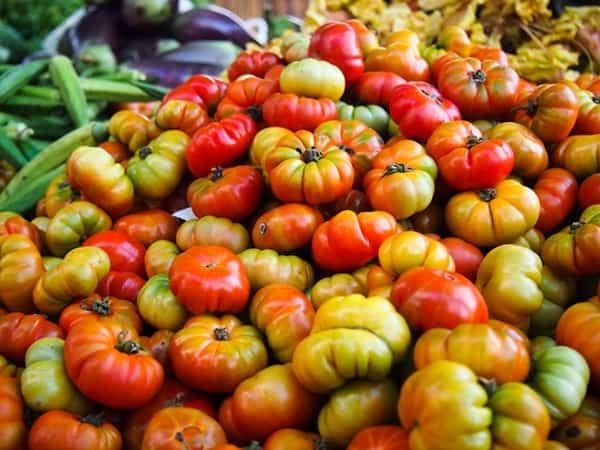 Tomatoes, Kalaw