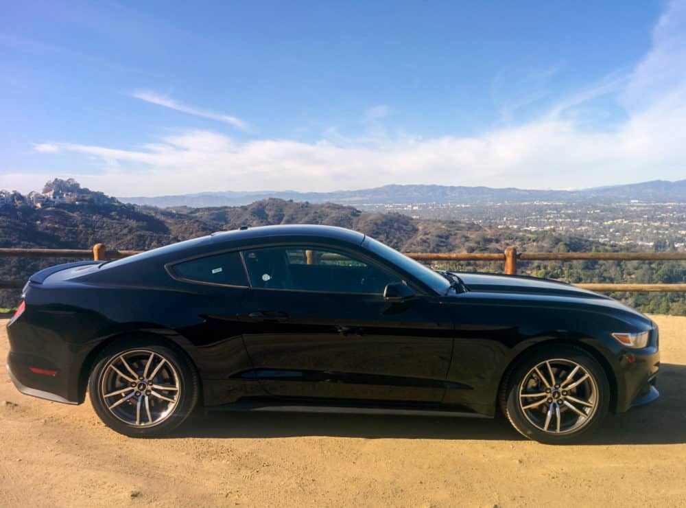 Mustang with a view