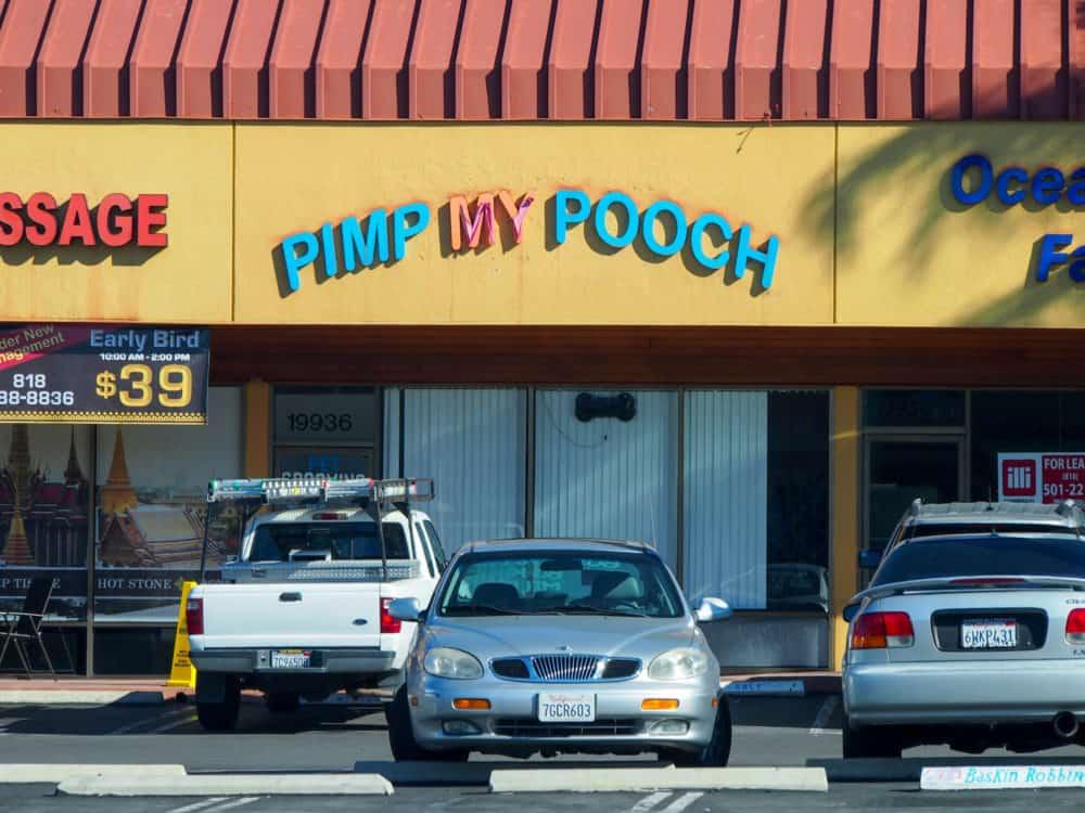 Pimp My Pooch