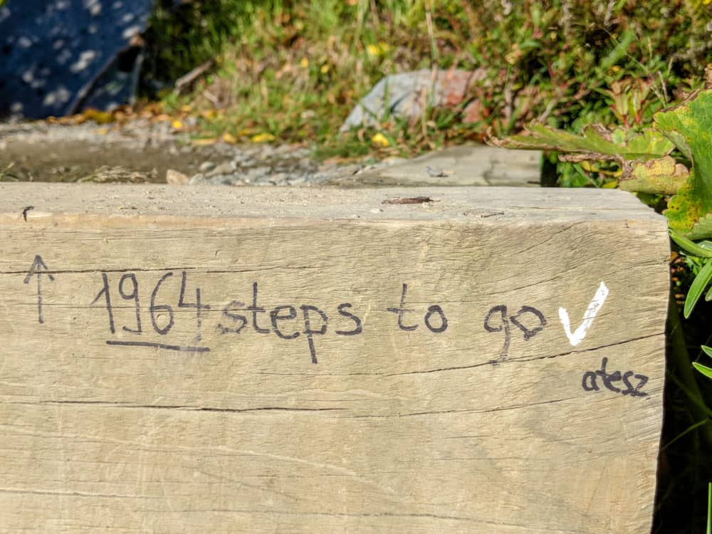 1964 steps to go