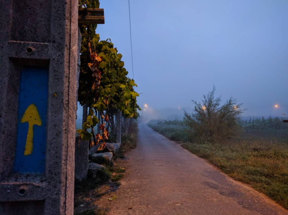 Foggy arrow, Camino Portuguese