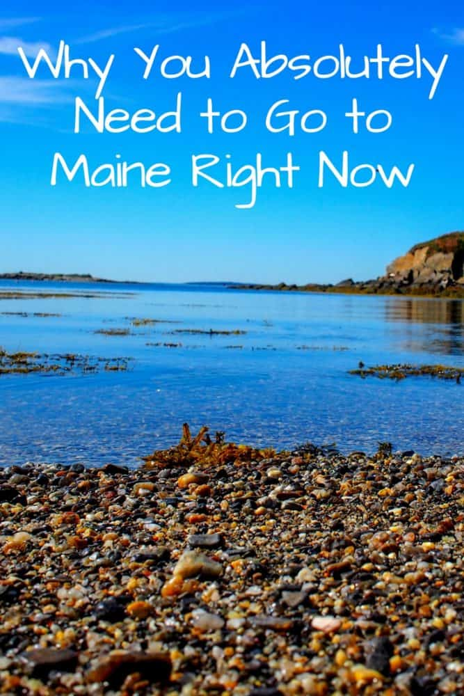 Why You Absolutely Need to Go To Maine Right Now