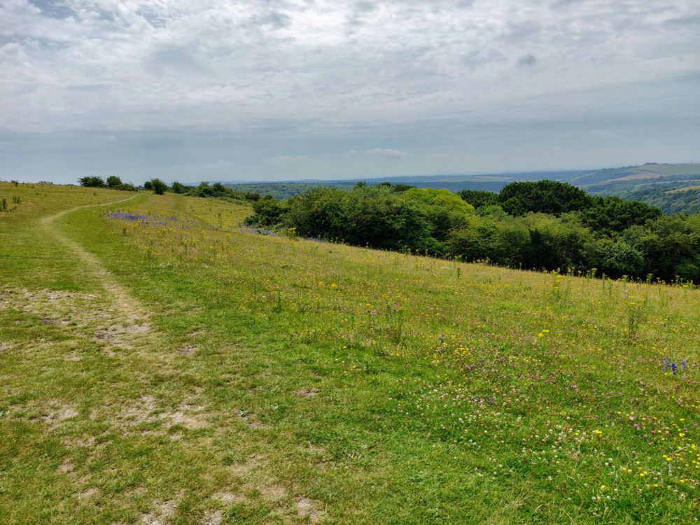 South Downs Way, Butser Hill