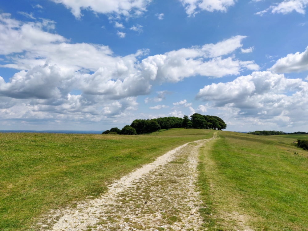 South Downs Way, Chanctonbury Ring
