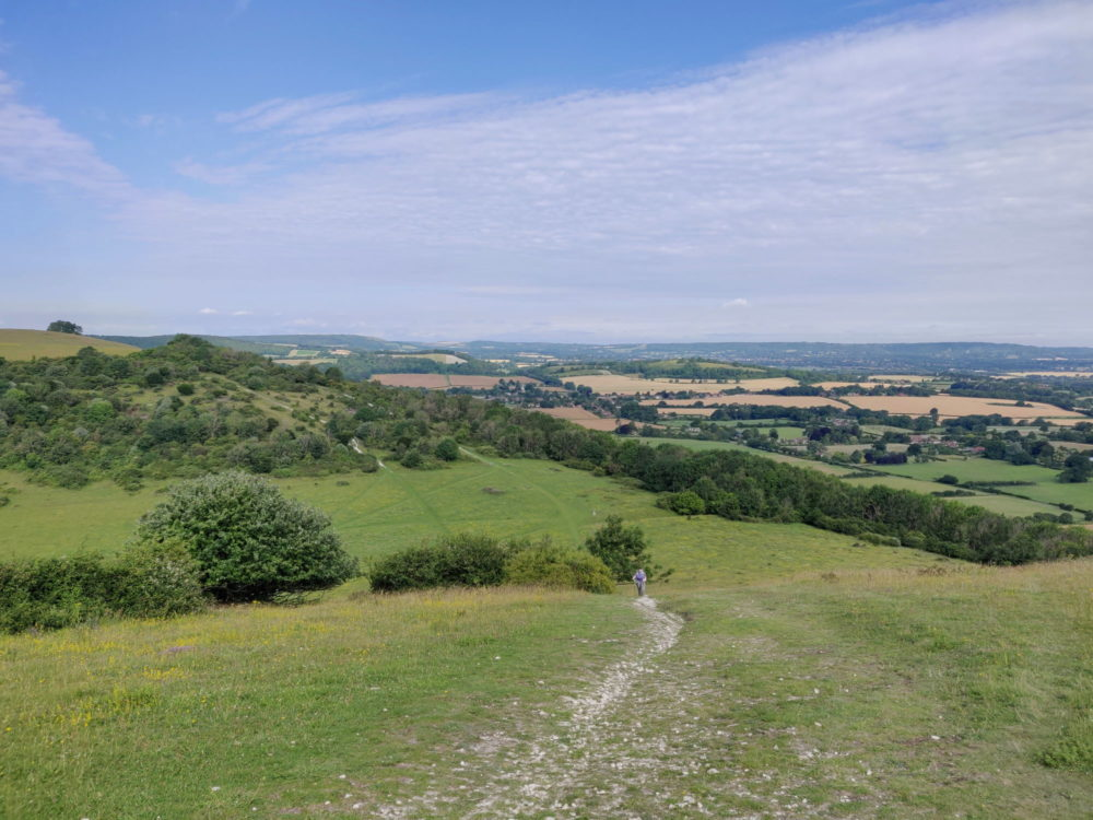 South Downs Way, Looking down from Beacon Hill near South Harting