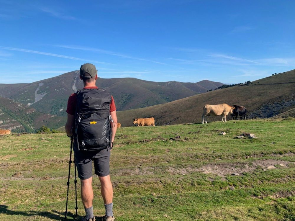 Backpack, Camino Primitivo