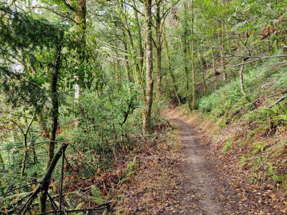 Dirt trail headed for Cadabo