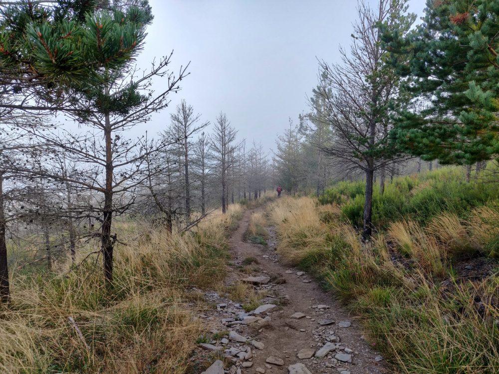 Descending through the fog, Camino Primitivo