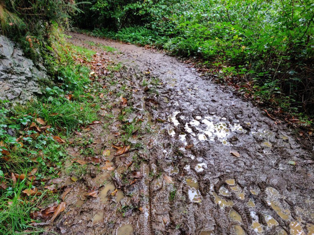 Muddy trail on the Camino Primitivo