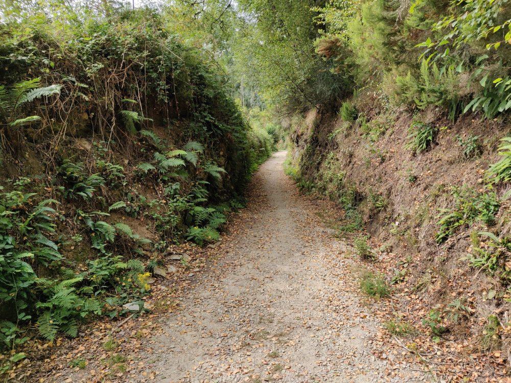 Start of the climb into Fonsagrada